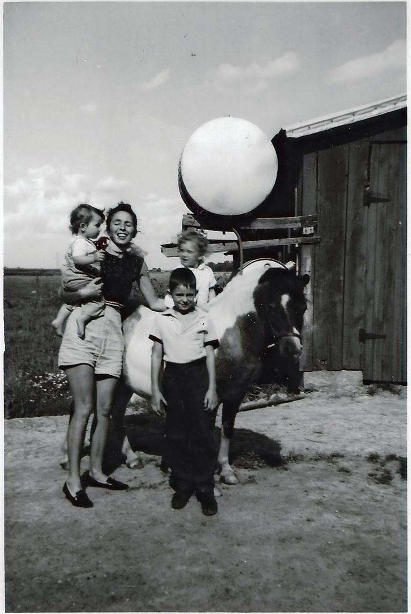 Life on an idyllic farm in Tavistock ON, Canada