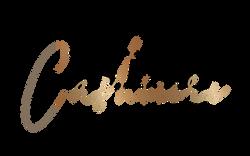 lash-logo-027_5d03bb6f6e7811_52346192