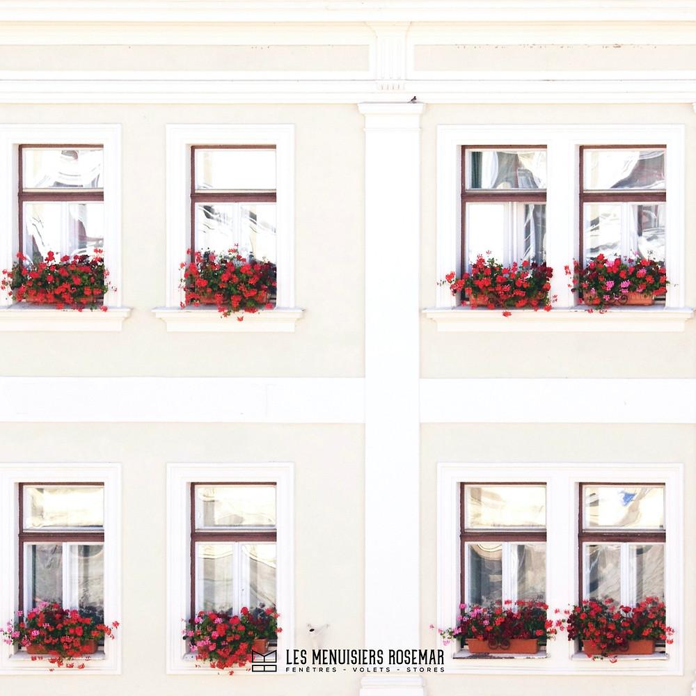 Plusieurs fenêtres charmantes avec des bouquets de fleurs rouges.