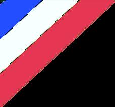 LPSFrance drapeau.001.png