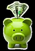 www.switchelectricitycompanies.com savin