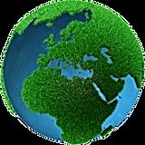 www.SwitchElectricityCompanies.com green