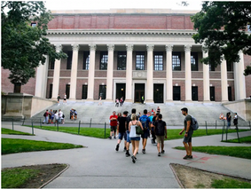 Harvard's international students are begging the school to let them come to campus in the fall, citing fears of being stuck in unstable home environments if they're forced to leave the US