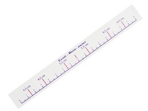 50 x eyebrow ruler