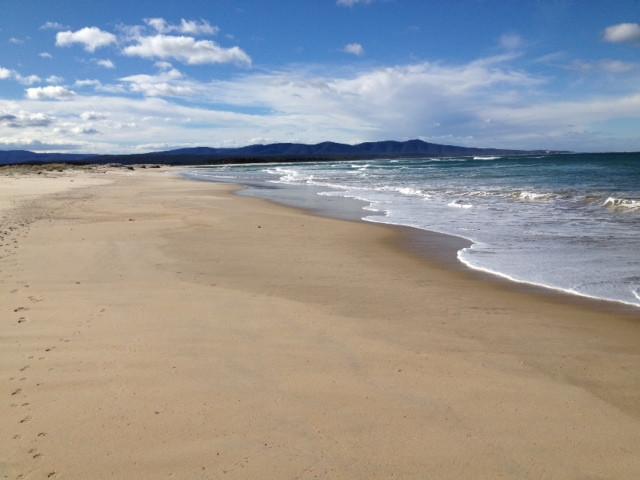 Surf beach 1.JPG