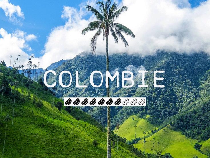 COLOMBIE MARAGOGYPE - Bolivar Fincal El Boton