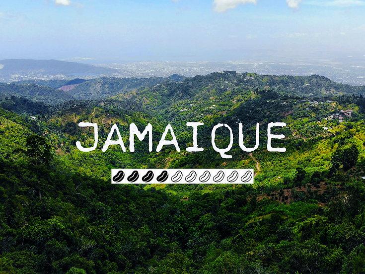 JAMAIQUE - Blue Mountain
