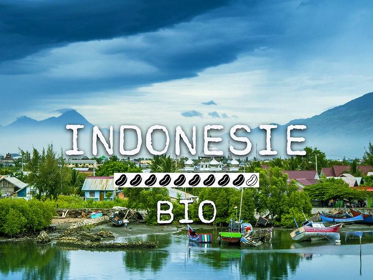 INDONESIE BIO - Java Makassar