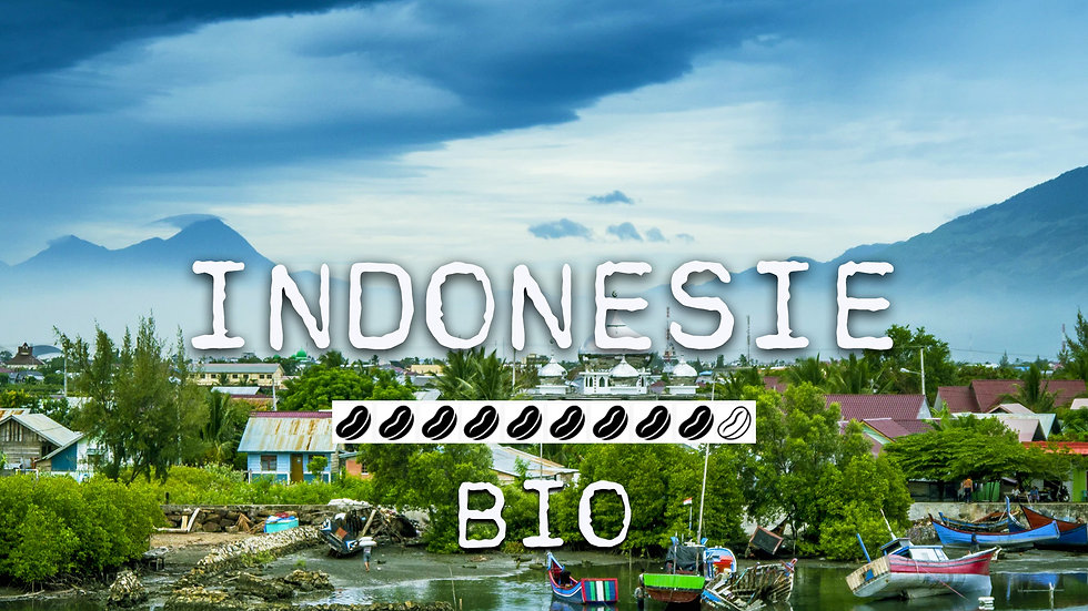 INDONESIE BIO - Java Makassar