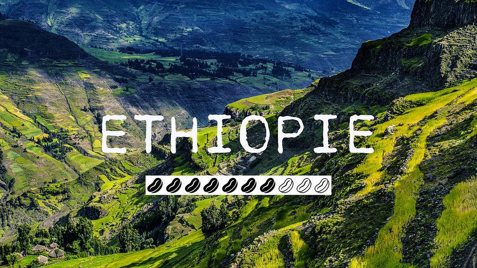 ETHIOPIE - Guji Bule Hora