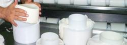 Poxtiñeneko gatza