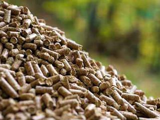 Proyectos de equipamientos térmicos de biomasa.