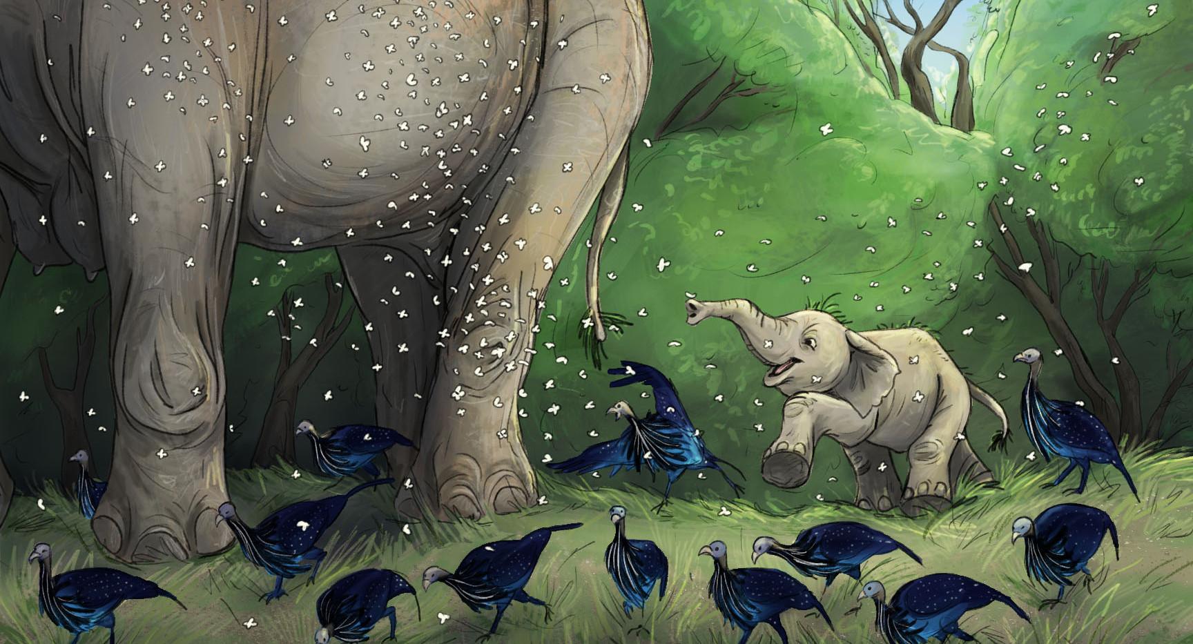 baby elephant.jpg