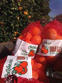Three 10 pound bags of navel oranges
