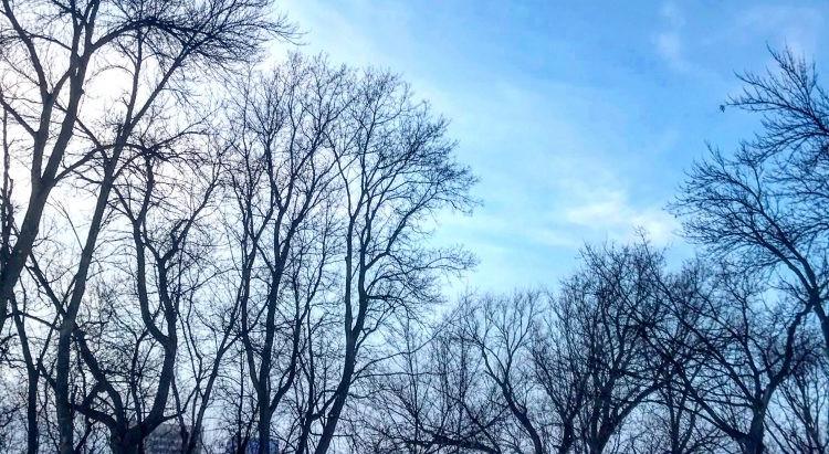 Getting Outside, Even In Winter