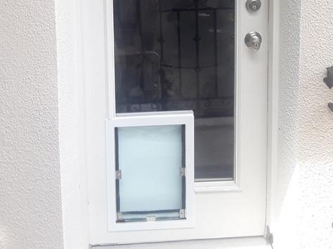 dog door in glass door 2.jpg