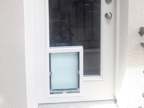 dog door in glass door 2.jpg