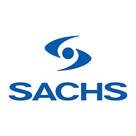 sachs1.png