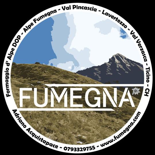 Logo Fumegna