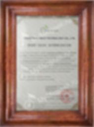 Сертификат Micgeek.jpg