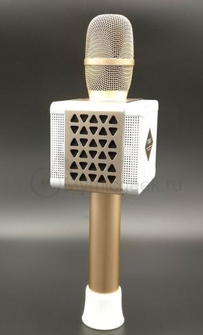 вид сзади на караоке микрофон