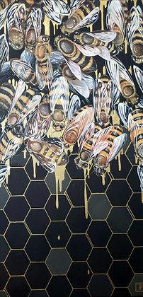 Honey Dipped
