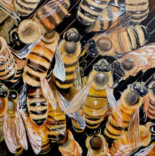 Bee's on black