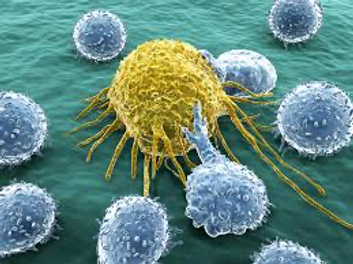 autoimmunity2.png