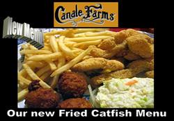 Fried Catfish & puppies