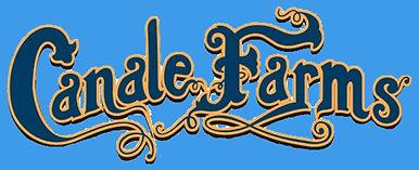 cf logo blue lite.jpg