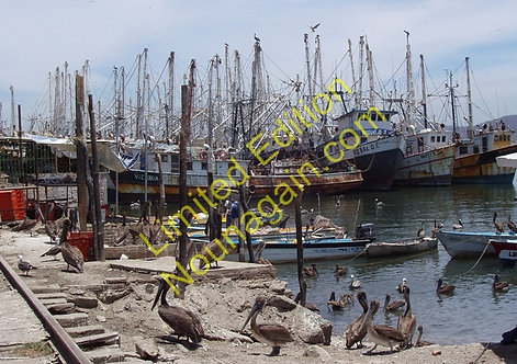 Mexican Port