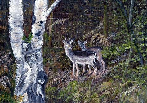 Too Deer