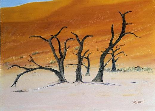 Dead Trees of Vlie
