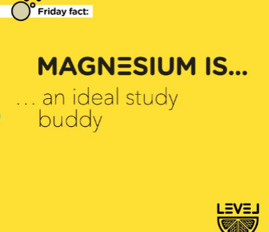 Magnesium is... an ideal study buddy