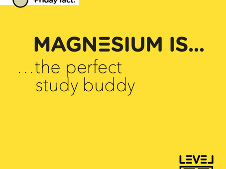 Magnesium is... the perfect study buddy