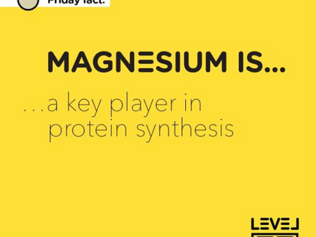 Magnesium... is a key player in protein synthesis