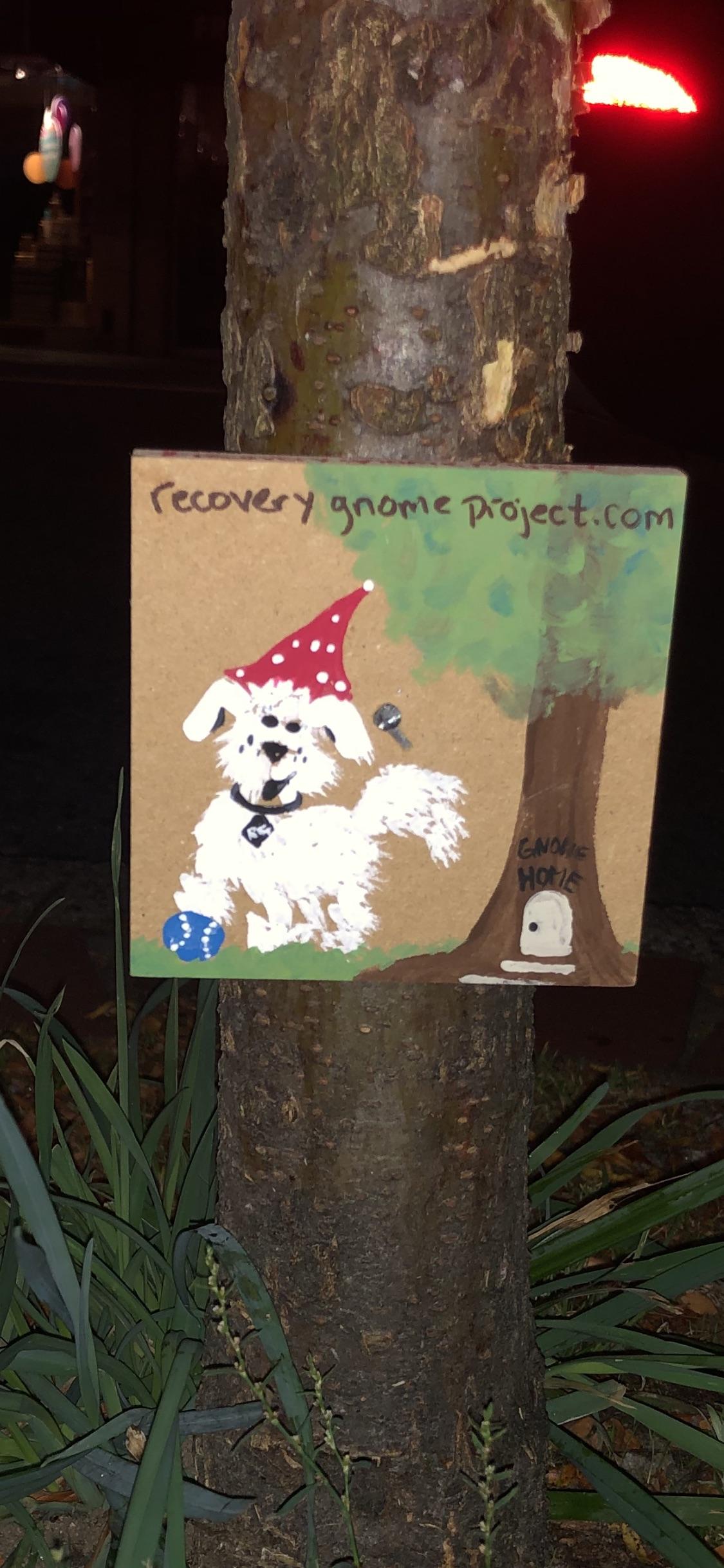 Monty Gnome