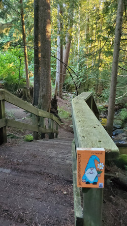 Grousewoods - creek trail