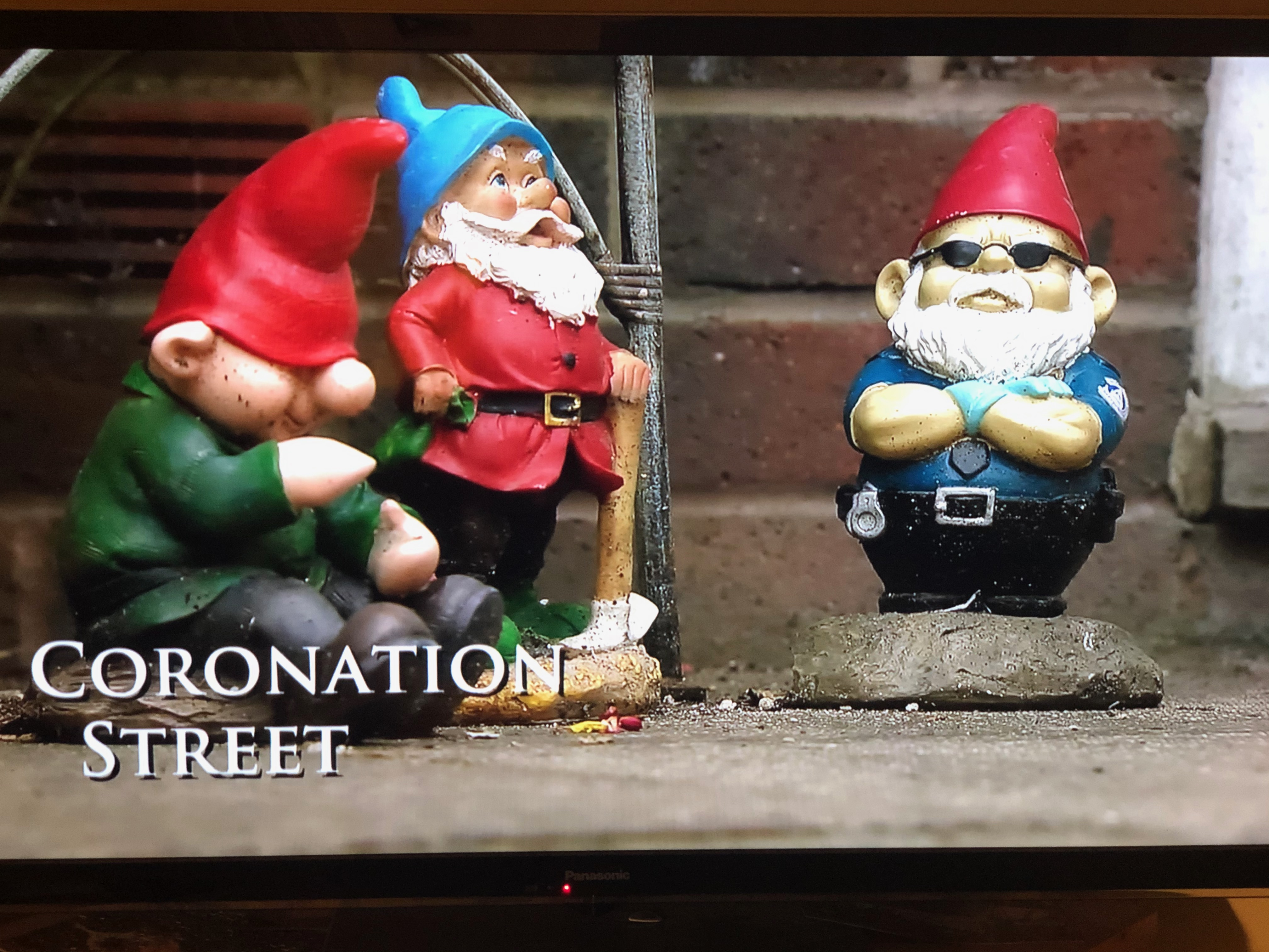 Corrie Recovery Gnomes