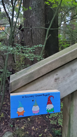 Grousewoods - creek trail-2