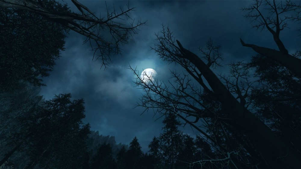 Moon over the forest