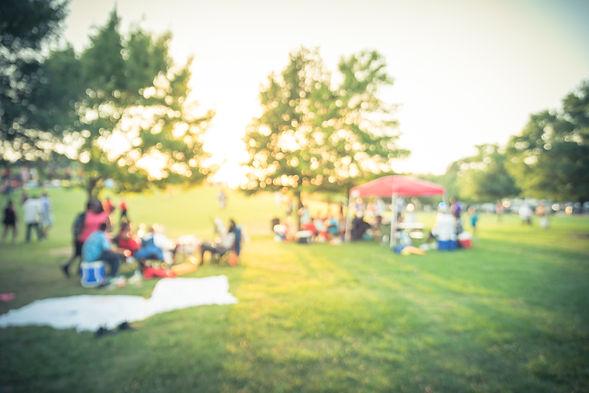 picnic shot.jpeg