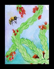 Succulent Bee Watercolor LF.jpg