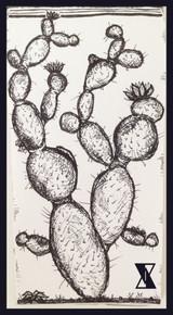 Hidden Cactus Sketchbook.JPG