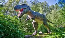 fossil-park.jpg