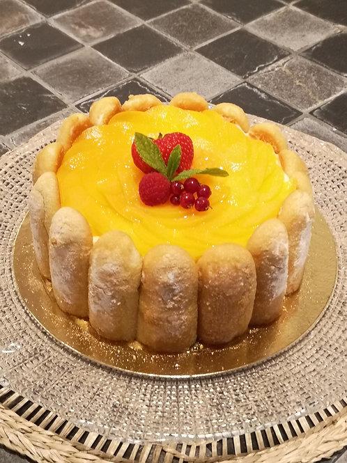 Charlotte aux fruits : biscuit cuillère, crème diplomate vanille et fruit