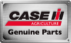 Lead B2B - CASE AG