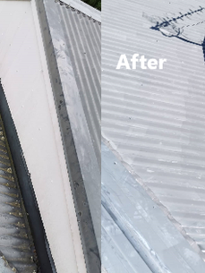 Cleanse Right Ltd Roof Wash Clean in Greenbay