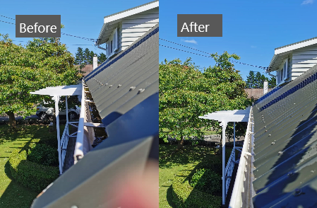 Cleanse Right Ltd Gutter Clean in Mt Albert