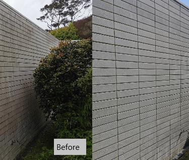 Cleanse Right Ltd Concrete Wall Clean in West Auckland